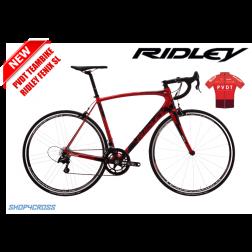 Limitiert: PVDT Teambike Ridley Fenix SL mit Shimano Ultegra R8000 inkl. Teamtrikot